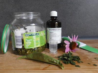 Echinacea - Liquid selbst herstellen