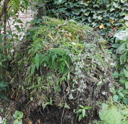 Komposthaufen im naturnahen Garten