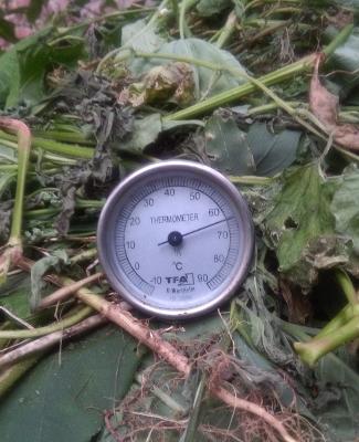 Kompostthermometer