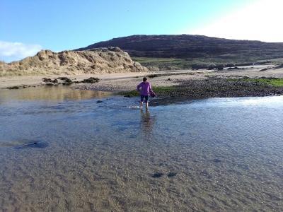 Xenia durchwatet einen Priel, Barleycove, Strand auf der Mizen Halbinsel, Irland