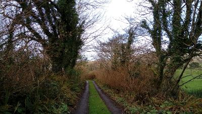 Einsame Straße auf der Mizen Peninsula