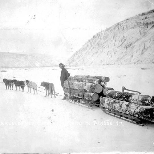 Holztransport nach Dawson, 18988