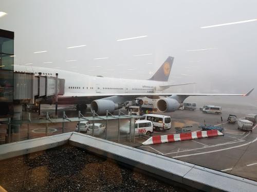 Flugzeug Frankfurt Airport