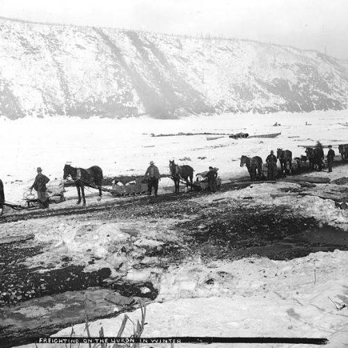 Fracht wird mit Pferdeschlitten über den zugefrorenen Yukon transportiert