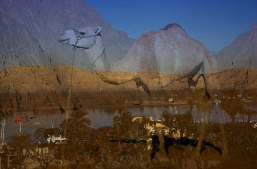 Nillandschaft mit Kamel