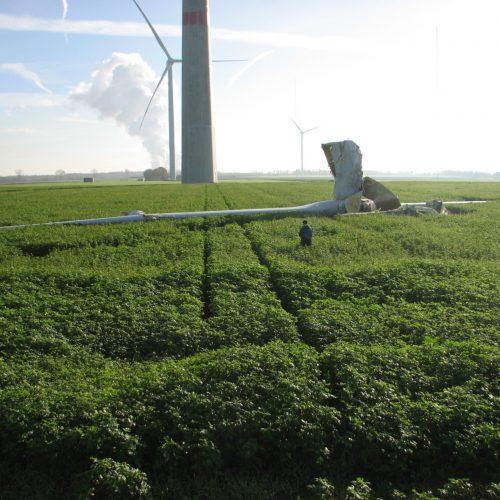 wind_turbine_blade